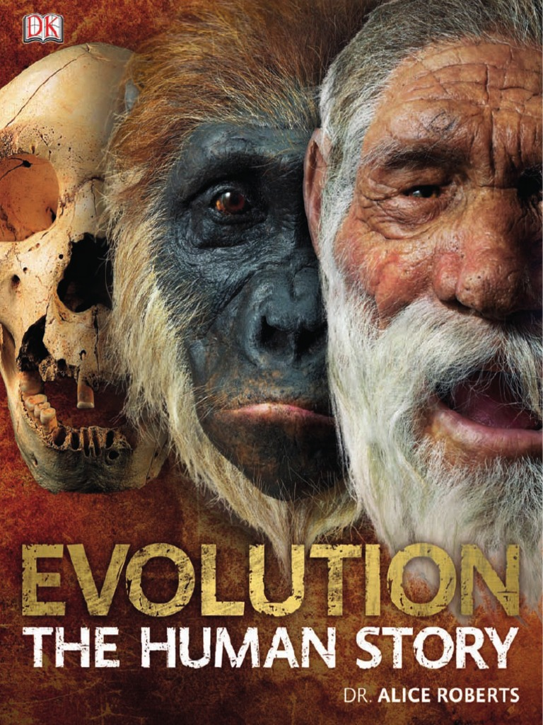 Evolution the human story fossil homo fandeluxe Image collections