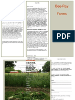 BeeRay Farms Brochure 2014