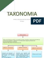 Mapas conceptuales Taxonomía