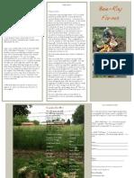 BeeRay Farms Brochure 2014