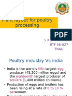Poultry Plant Layout -swami