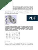 Citologia, Morfologia, Histologia, Anatomia, Biofisica, Bioquimica
