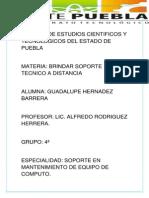 Trabajo de Guadalupe Hernandez Barrera