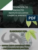 Sustentacion pedagogia