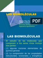 Biomoleculas 2010(2) Parcial