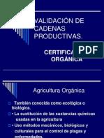 8g. VALIDACIÓN DE CADENAS PRODUCTIVAS