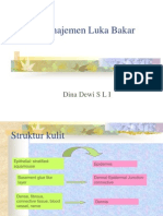 167204210 Manajemen Luka Bakar