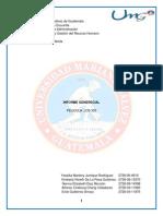 Informe Gerencial _300