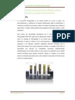 COLUMNA DE WINOGRADSKY INFORME.docx