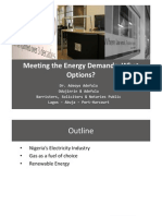 Meeting the Energy Demands- What Options