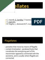 FLAGELLATES 2