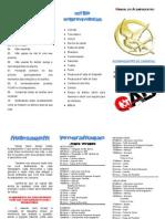 programação_AcampaDentro2014