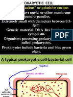 1. Prokaryotic Cell and Eukaryotic Cell