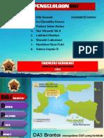 P.DAS Brantas.pdf