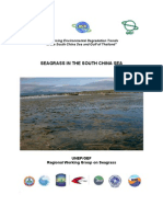 SCS Seagrass Booklet