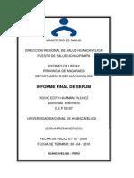 Ejemplo Informe Serum-2010