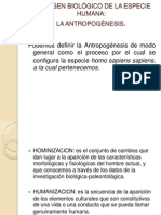 Lengua y literatura - copia.ppt