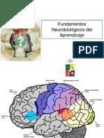 como-aprende-el-cerebro-1226874740938726-9