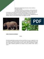 flora y fauna de centroamerica.docx