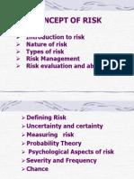 riskmangement-110423060804-phpapp01