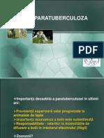 Curs Paratuberculoza
