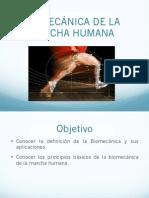 biomecánica de la marcha humana