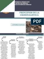 PRINCIPIOS DE LA CRIMINALISTICOS.pptx
