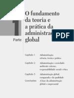 Administração - Reinaldo Silva 2008 São Paulo Ed Prentice Hall