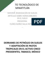 Articulo de Hidrocarburos