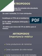 ARTROPODOS (1)