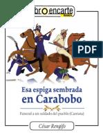 Esa Espiga en Caraboboweb (1)