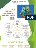 hemisfericidad cerebral (1).pdf