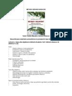 Metode Kerkimi Shkencor Leksionet 1 - 9 - Master Shkencor120