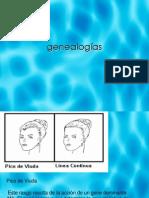 genealoga-120595461556746-5