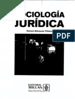 SOCIOLOGIA JURIDICA PIÑERO