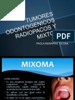Tumores Odontogenicos Radiopacos y Mixtos