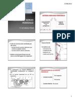 2_a Fisiopatologia Del Snp