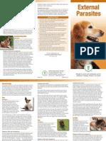 External Parasites Brochure