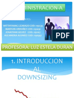 downsizingadministracion-130223220641-phpapp02.pptx