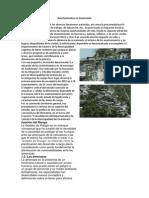 Asentamientos en Guatemala