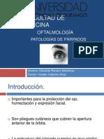 oftalmología, patologías palpebrales.