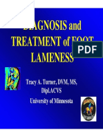 Diagnosis and Treatment of Foot Lameness