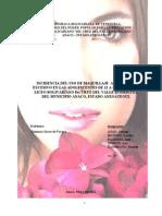 Proyecto El Maquillaje LISTO5
