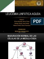 TRABAJO HEMATOLOGIA -  Leucemia Linfática Aguda