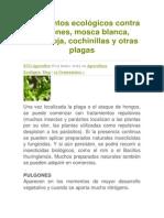 tratamientos ecológicos contra pulgones