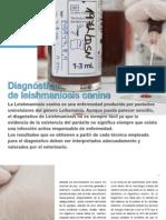 AV_22_Diagnóstico de leishmaniosis canina