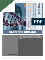 Informe 2 Final - Genetica