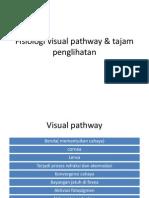 Fisiologi Visual Pathway