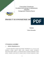 Proiect Econometrie Moisa Alexandra