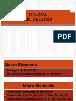 20. Mineral Met Blok V